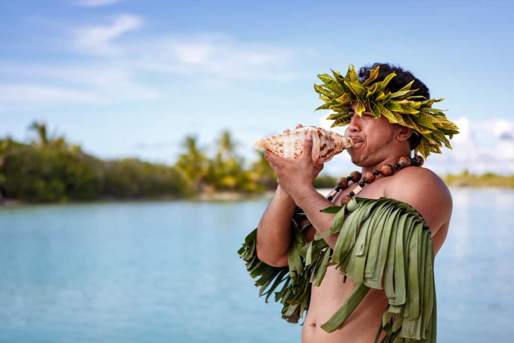 conch shell blower